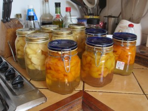 chile quinta escondida bottled peaches and pears