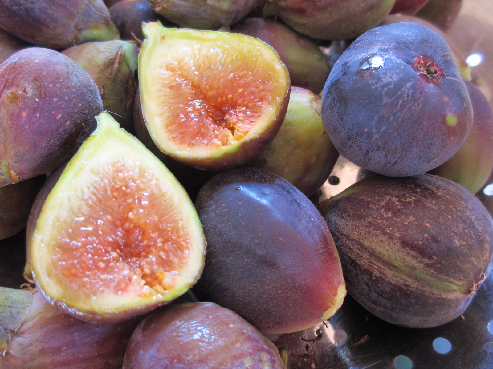 chile quinta escondida figs