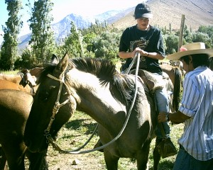 horse-riding in chile
