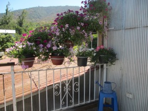 chile vacation rental terrace